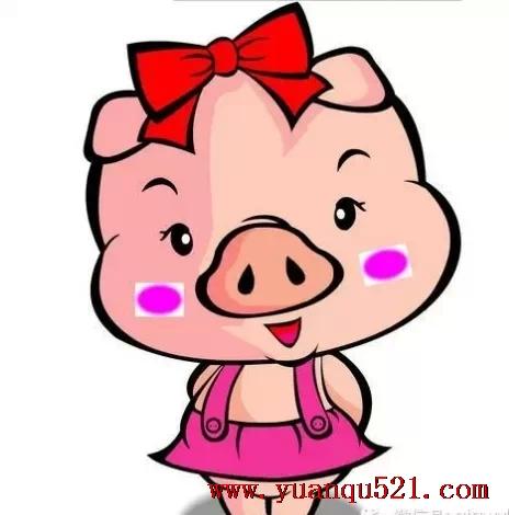 新年可爱孩子 猪头